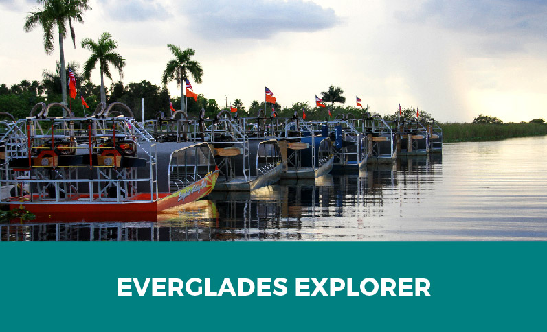 Everglades Explorer Group Tour