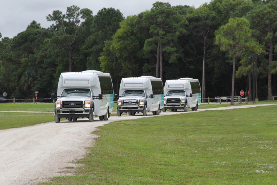 Bus Fleet