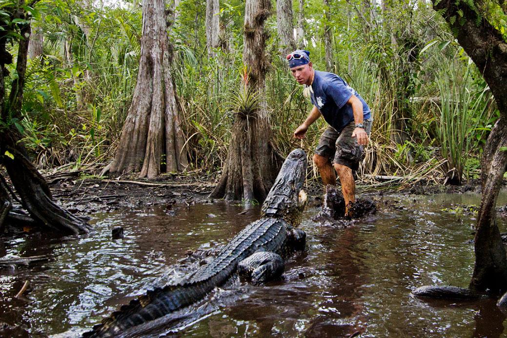 Everglades Tour Florida